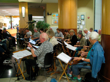 Maryville Dulcimer Club