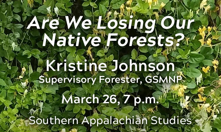 Are We Losing Our Native Forests?