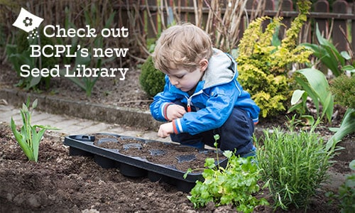 BCPL's Seed Library