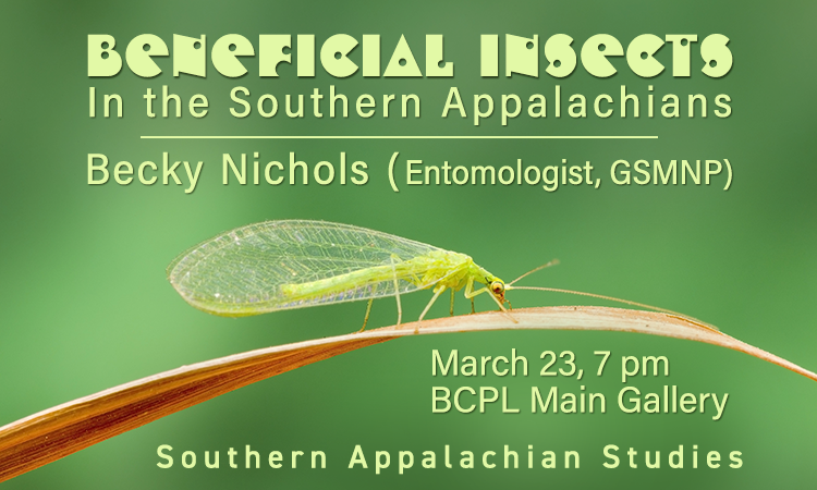 Beneficial Insects in the Southern Appalachians