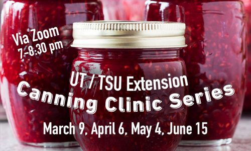 Canning Clinic Series